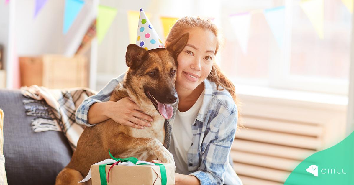 7 идеи за рождения ден на кучето?