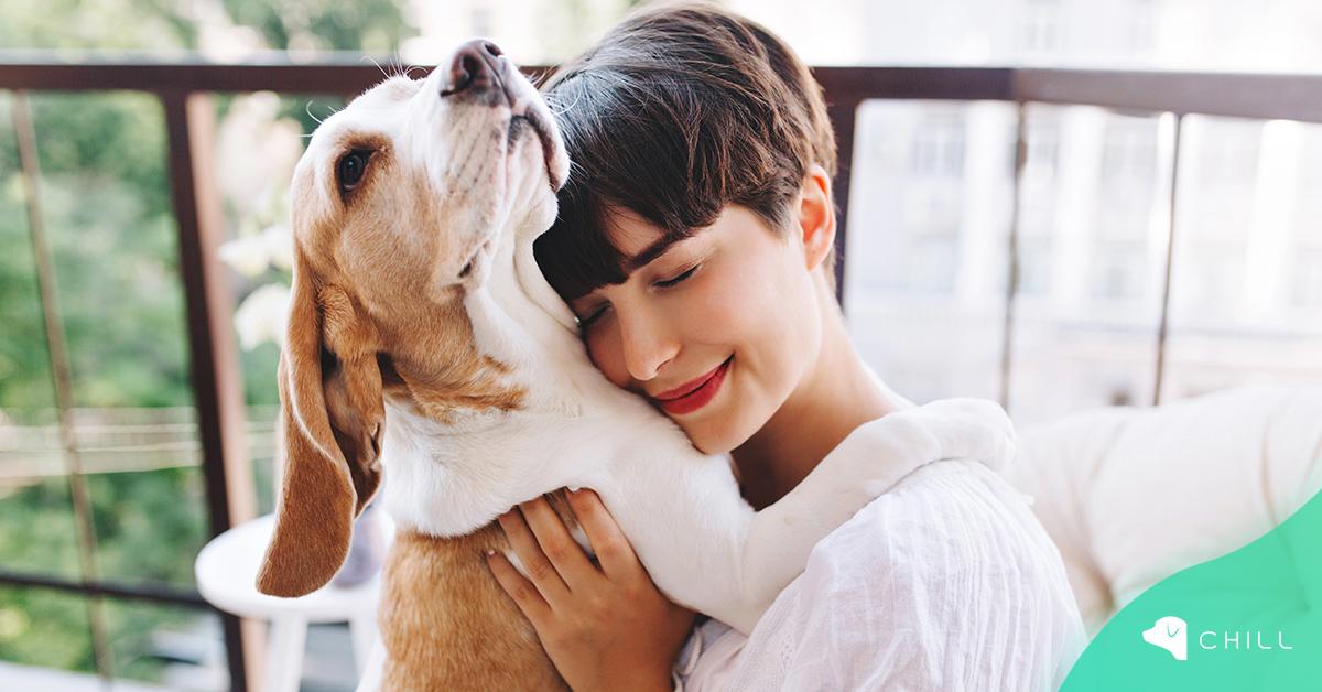 10 полезни лайфхака за всички, които имат куче (Част 1)